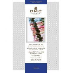 Cartella colori reale Mouliné DMC