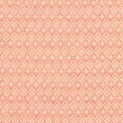 Tessuto Americano Rosa Antico con Decori Variegati